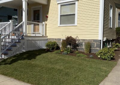 New Lawn Installation 25 Ardale St